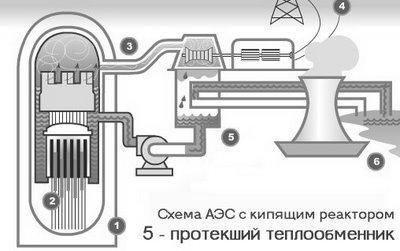 Теплообменники атомных электростанций посудомойка встроенный теплообменник
