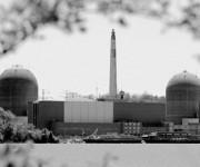 """Пташиний послід став причиною аварійного відімкнення на атомній електростанції """"Indian Point"""""""