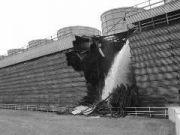 Розрив труби системи охолодженя Вермонт Янкі